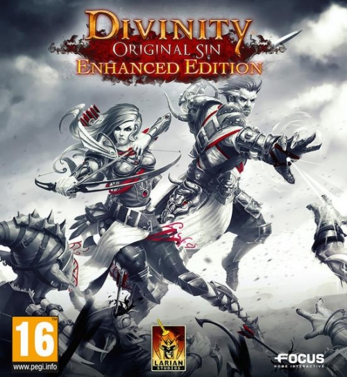 Divinity: Original Sin - Enhanced Edition (2015)