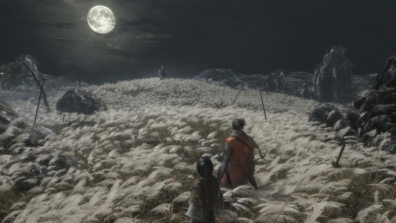 Скриншот к игре Sekiro: Shadows Die Twice от R.G. Механики